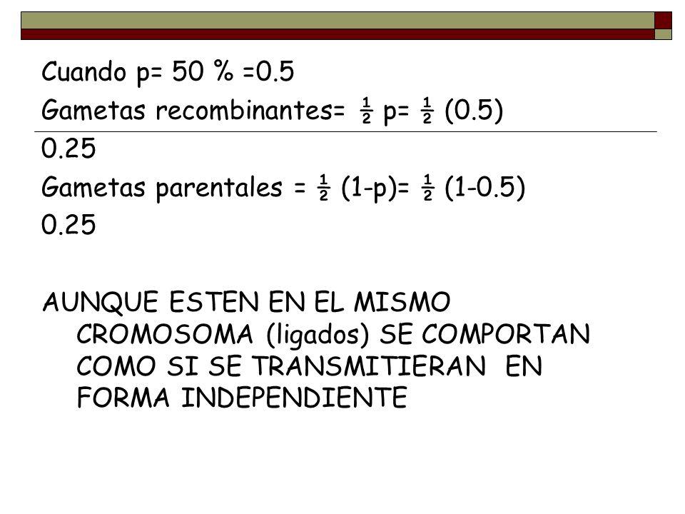 Cuando p= 50 % =0.5 Gametas recombinantes= ½ p= ½ (0.5) 0.25. Gametas parentales = ½ (1-p)= ½ (1-0.5)