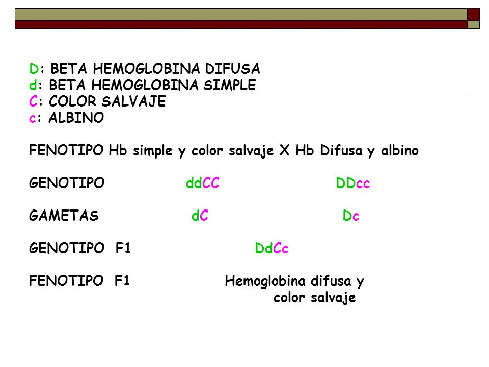 D: BETA HEMOGLOBINA DIFUSA