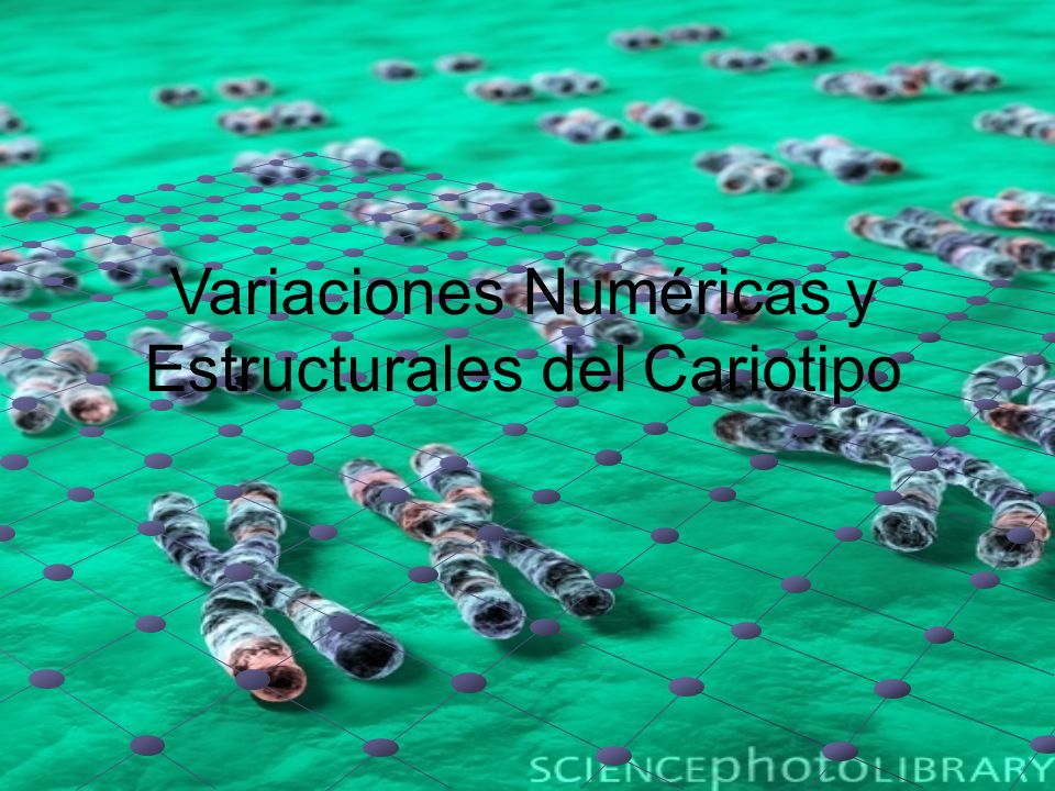 Variaciones Numéricas y Estructurales del Cariotipo