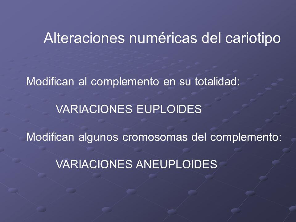 Alteraciones numéricas del cariotipo