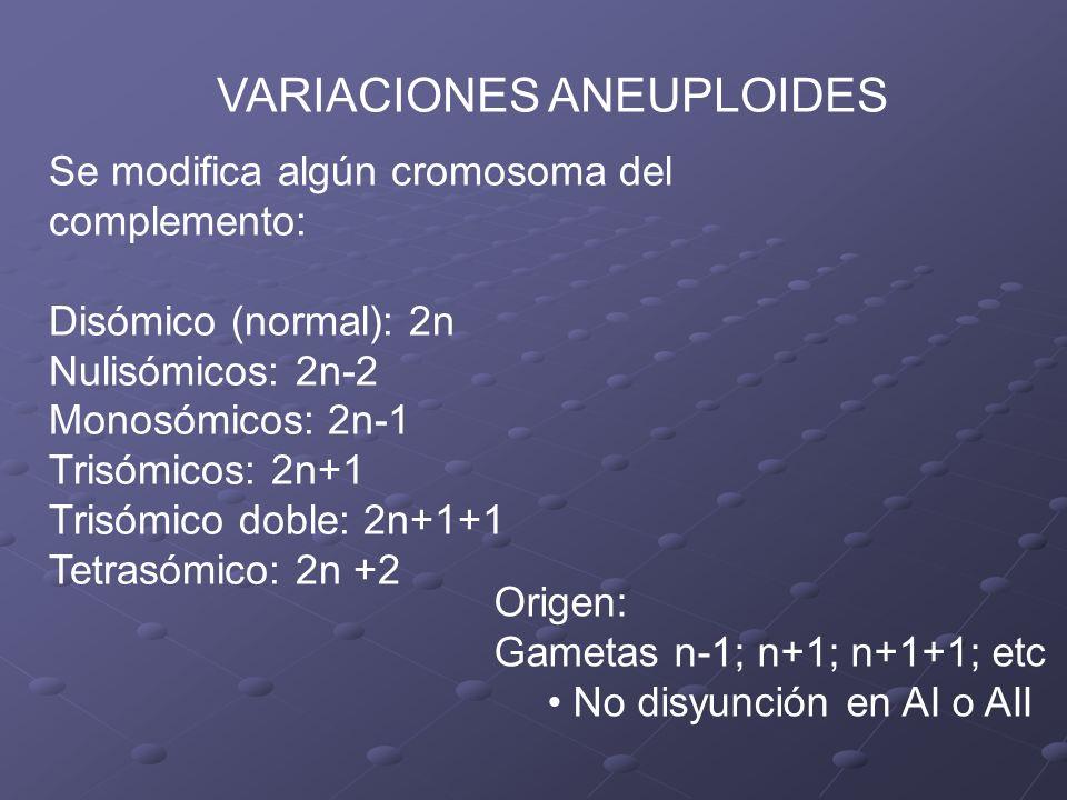 VARIACIONES ANEUPLOIDES