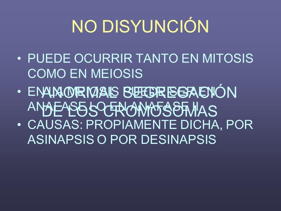 NO DISYUNCIÓN ANORMAL SEGREGACIÓN DE LOS CROMOSOMAS