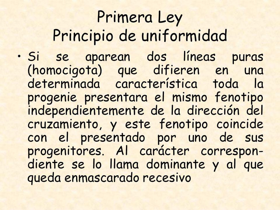 Primera Ley Principio de uniformidad