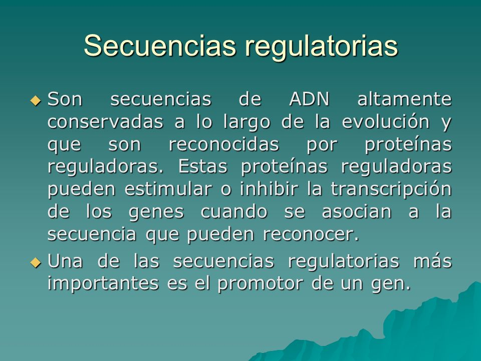 Secuencias regulatorias