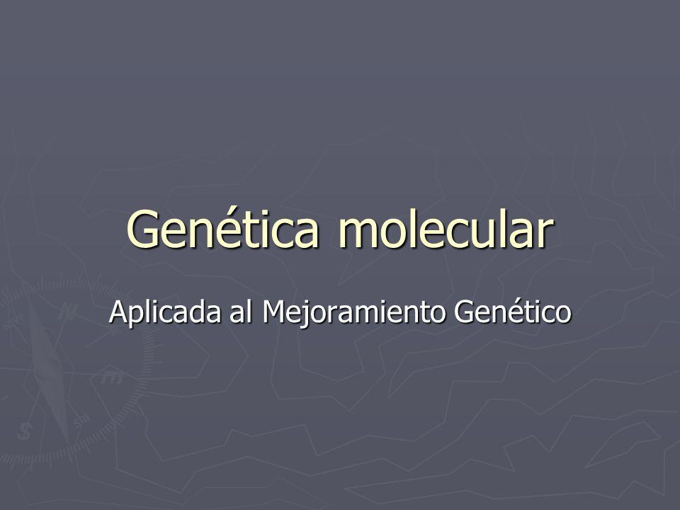 Aplicada al Mejoramiento Genético