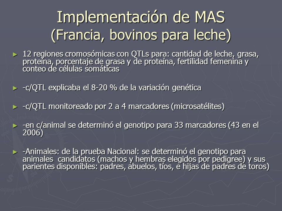 Implementación de MAS (Francia, bovinos para leche)