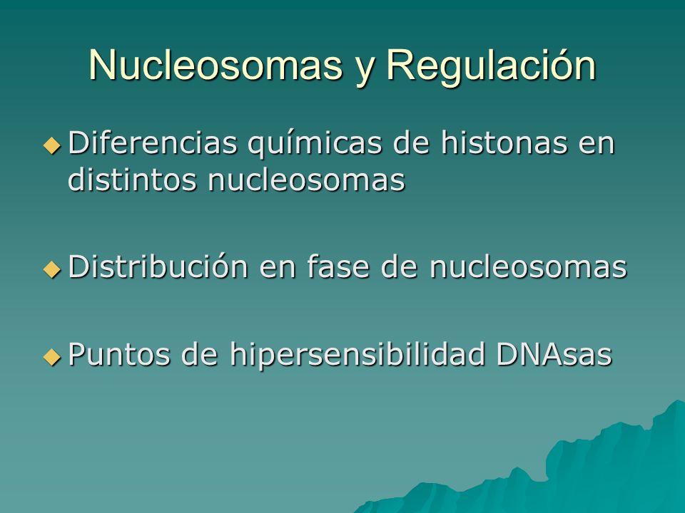 Nucleosomas y Regulación