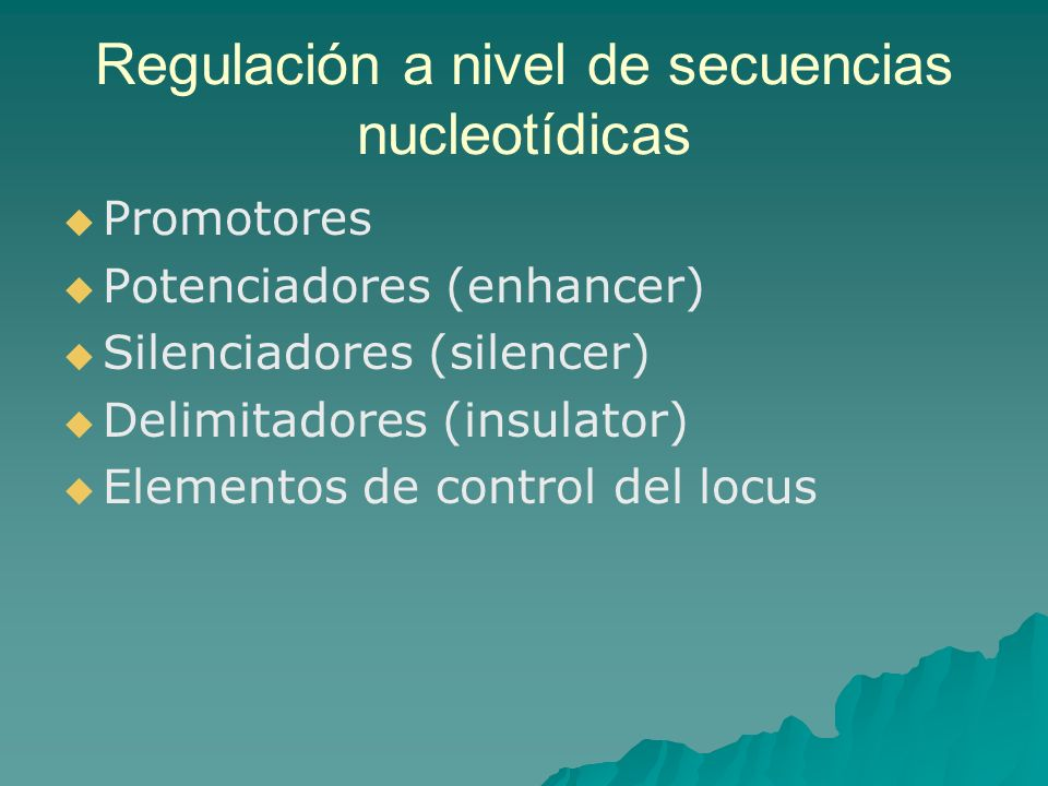 Regulación a nivel de secuencias nucleotídicas