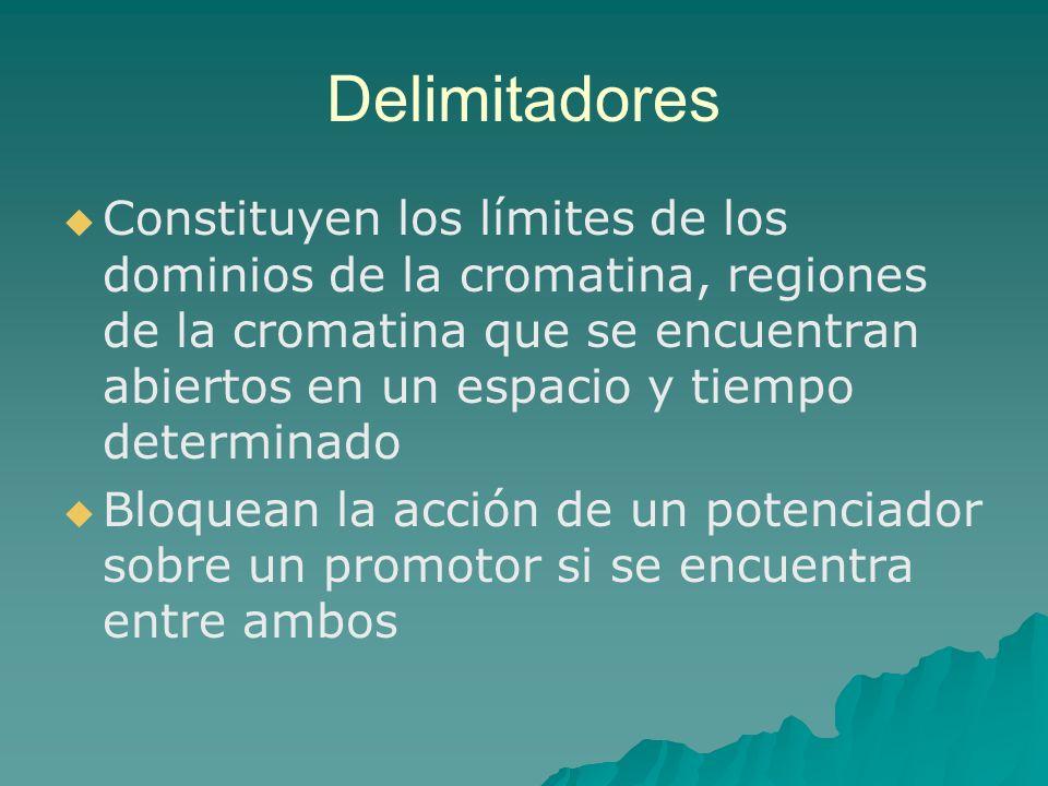 Delimitadores