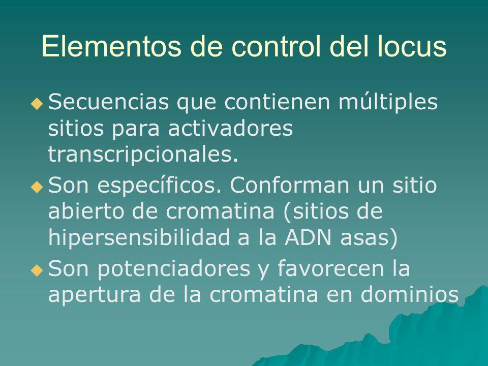 Elementos de control del locus