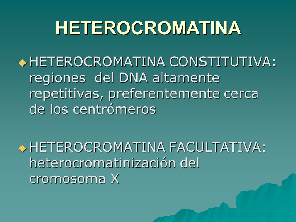 HETEROCROMATINA HETEROCROMATINA CONSTITUTIVA: regiones del DNA altamente repetitivas, preferentemente cerca de los centrómeros.