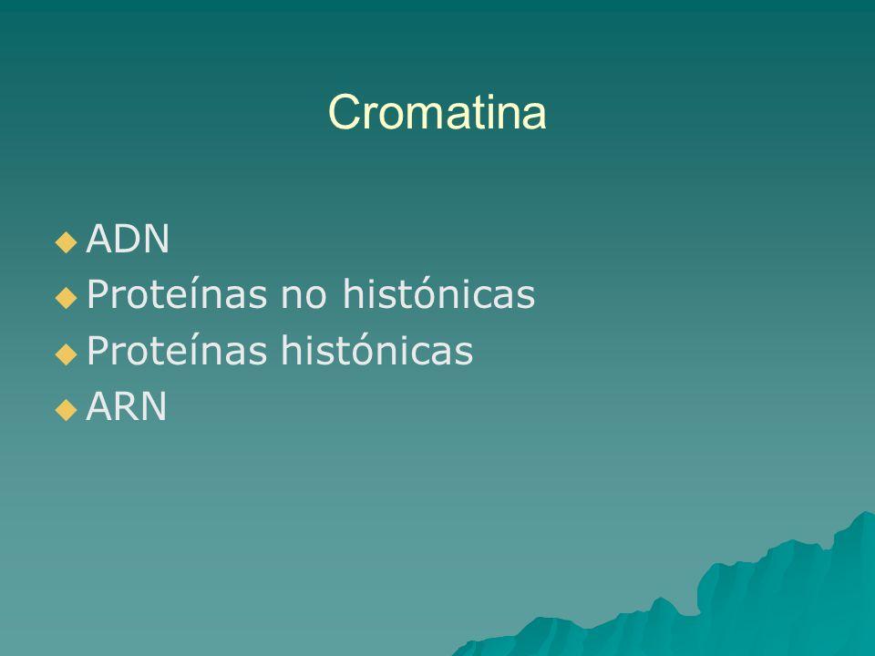 Cromatina ADN Proteínas no histónicas Proteínas histónicas ARN