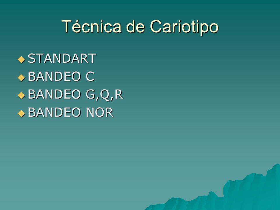 Técnica de Cariotipo STANDART BANDEO C BANDEO G,Q,R BANDEO NOR