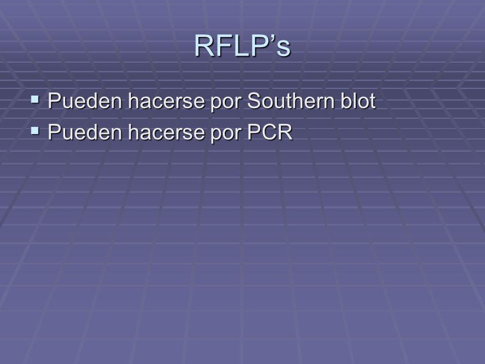 RFLP's Pueden hacerse por Southern blot Pueden hacerse por PCR