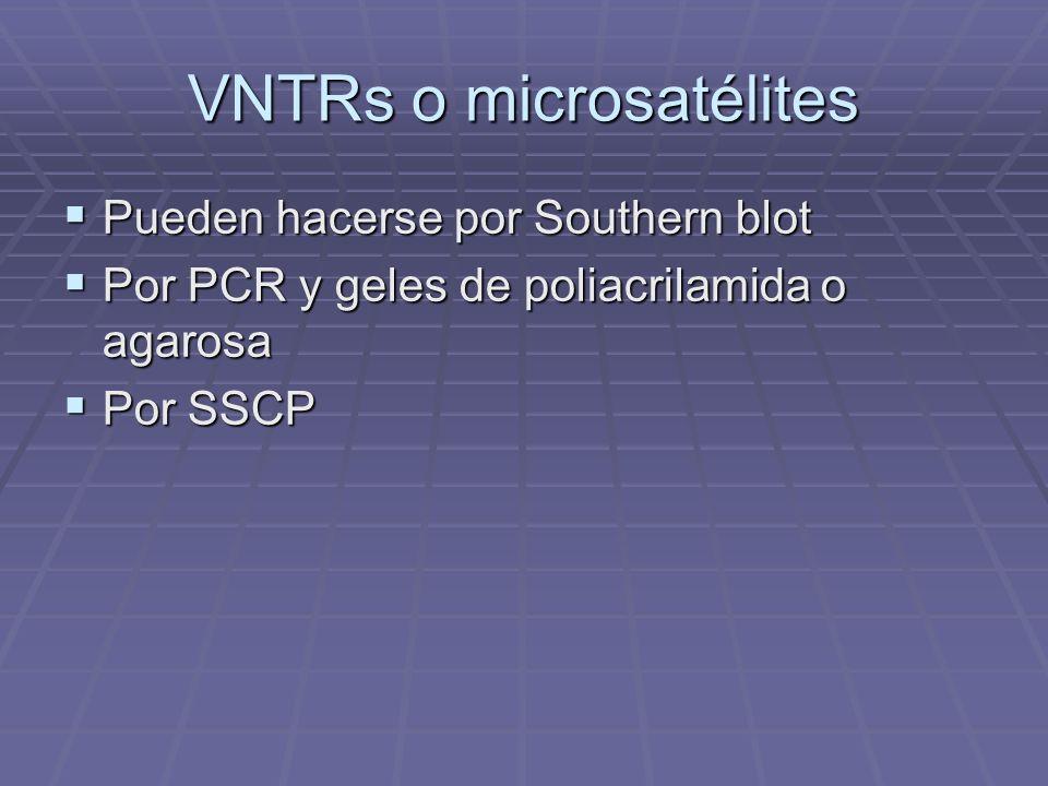 VNTRs o microsatélites