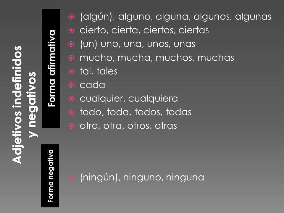 Adjetivos indefinidos y negativos