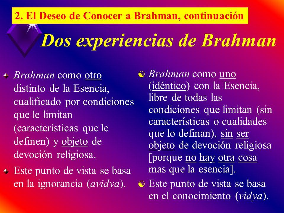 Dos experiencias de Brahman