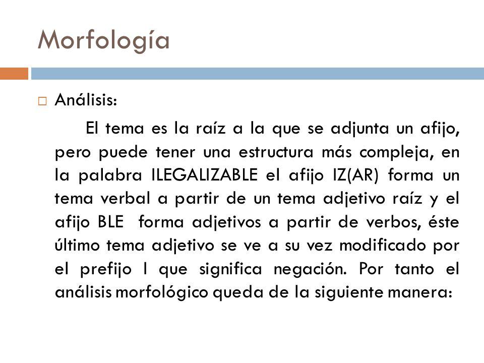 Morfología Análisis: