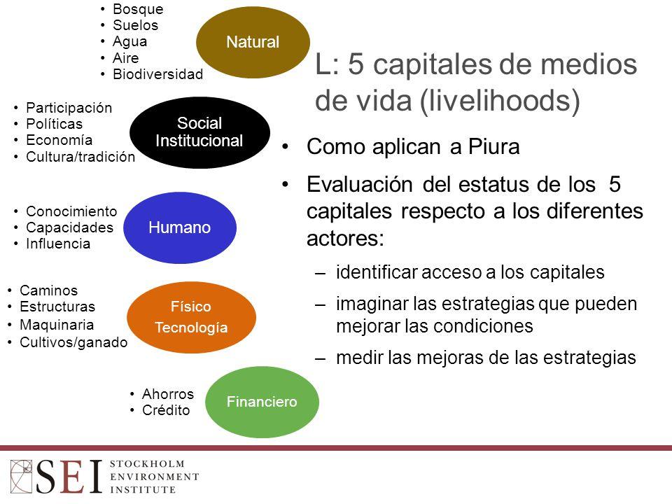 L: 5 capitales de medios de vida (livelihoods)