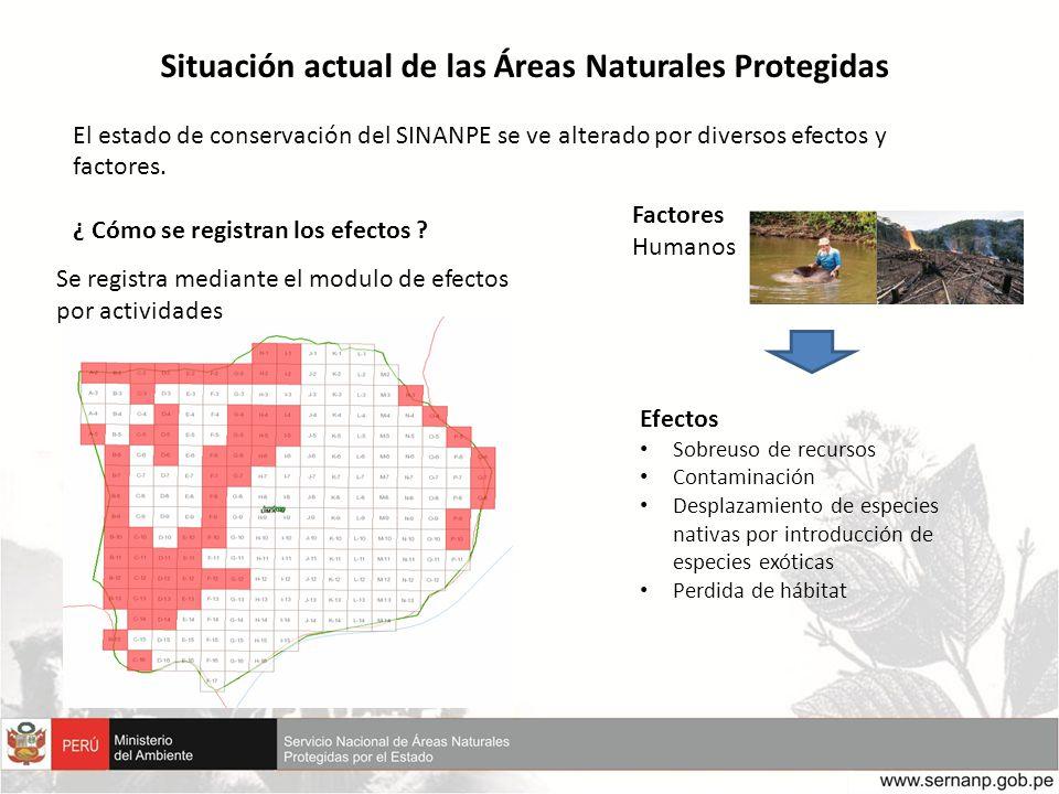 Situación actual de las Áreas Naturales Protegidas