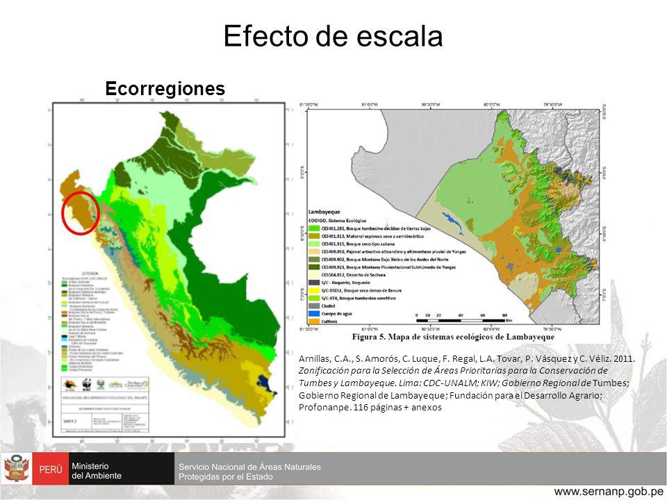 Efecto de escala Ecorregiones