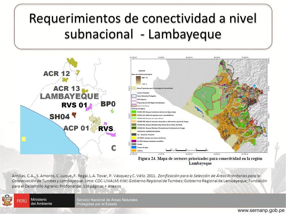 Requerimientos de conectividad a nivel subnacional - Lambayeque