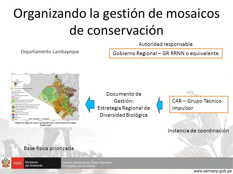 Organizando la gestión de mosaicos de conservación