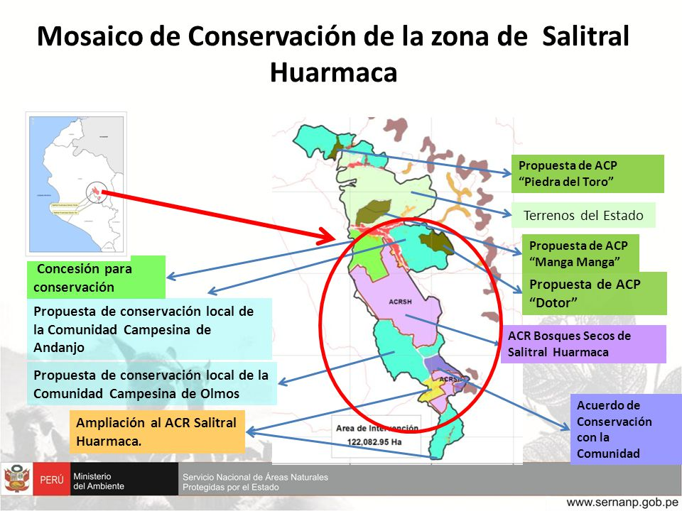 Mosaico de Conservación de la zona de Salitral Huarmaca