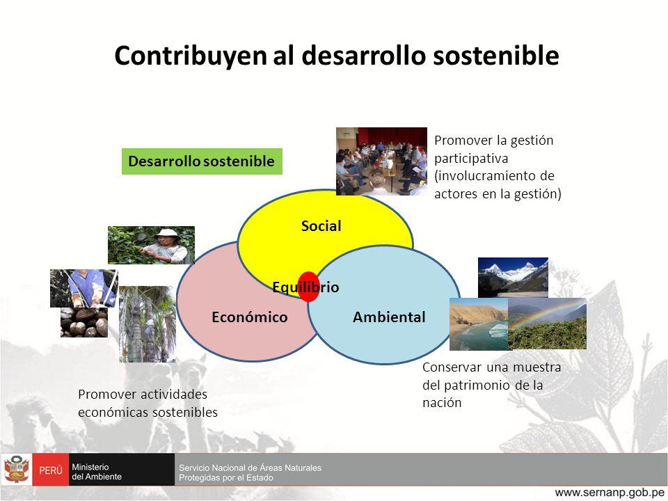 Contribuyen al desarrollo sostenible