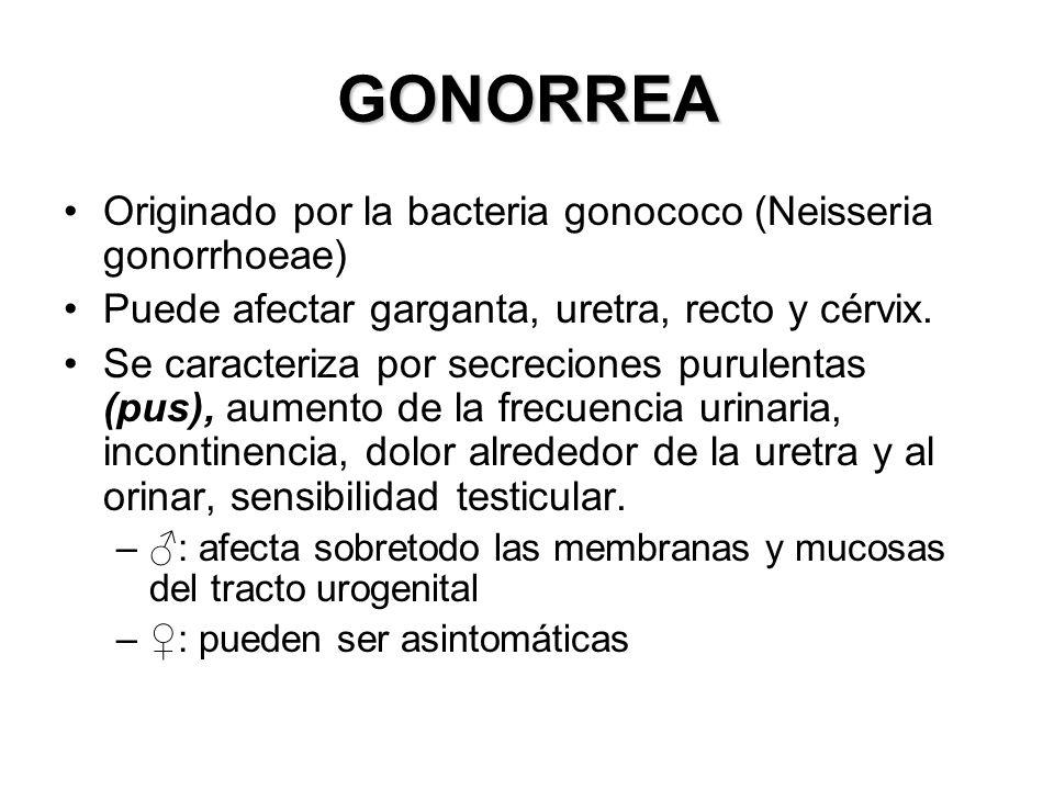 GONORREA Originado por la bacteria gonococo (Neisseria gonorrhoeae)