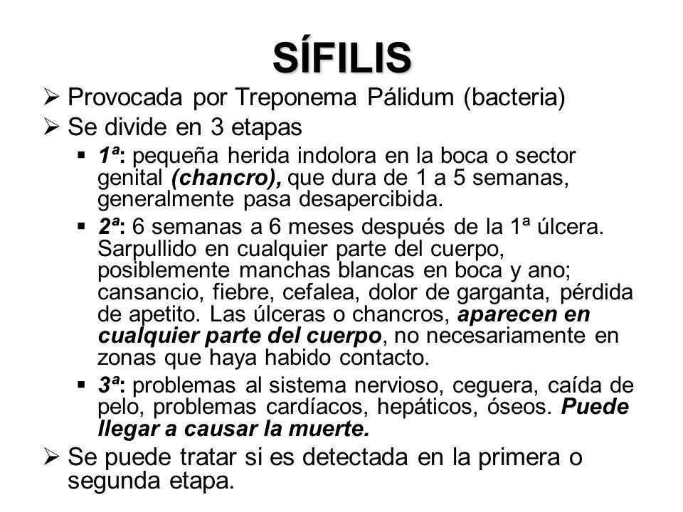 SÍFILIS Provocada por Treponema Pálidum (bacteria)