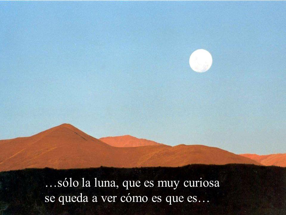 …sólo la luna, que es muy curiosa