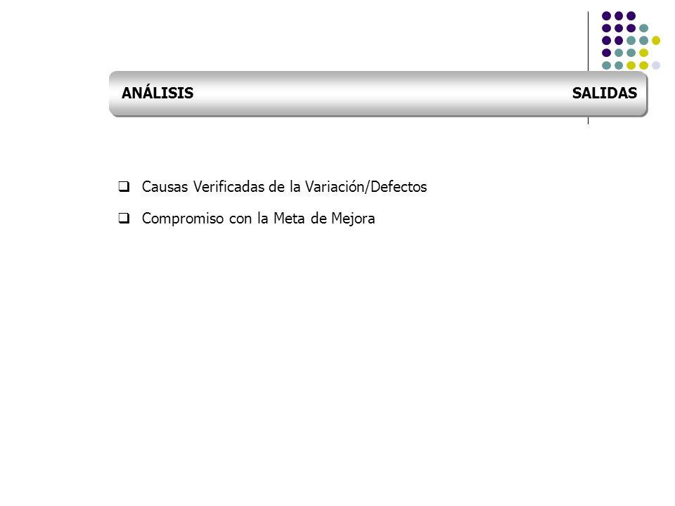 ANÁLISIS SALIDAS Causas Verificadas de la Variación/Defectos.
