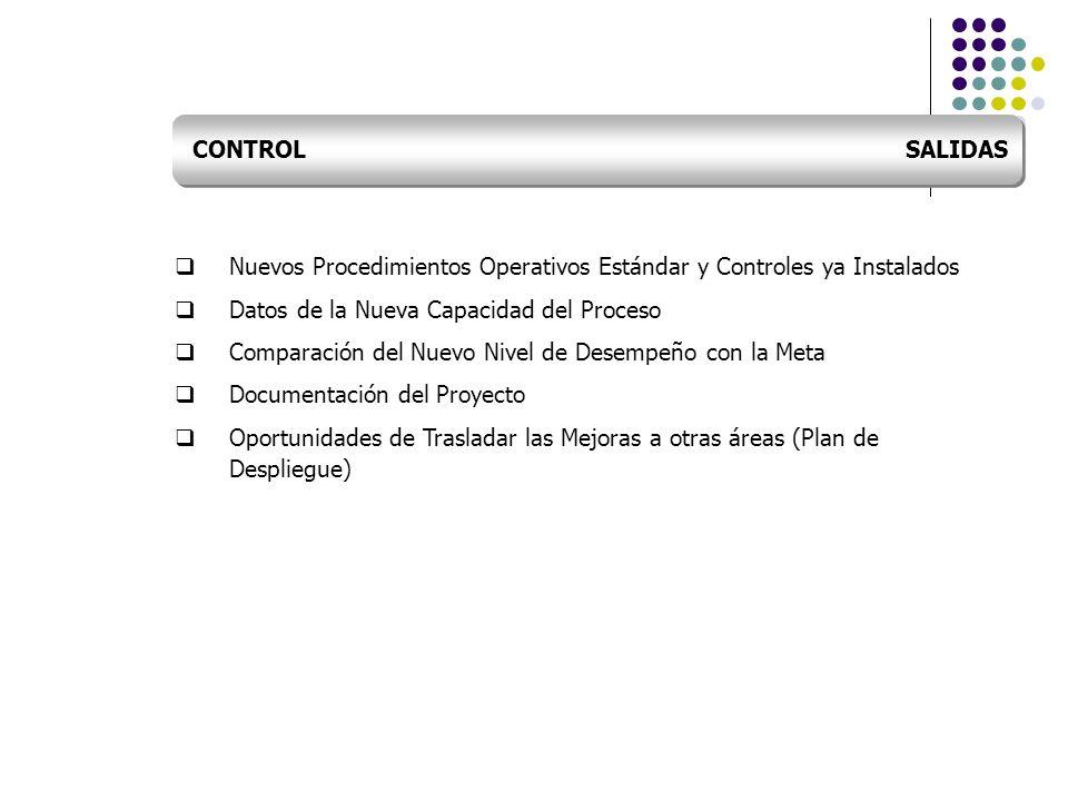 CONTROL SALIDAS Nuevos Procedimientos Operativos Estándar y Controles ya Instalados.
