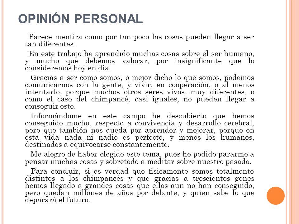 OPINIÓN PERSONAL