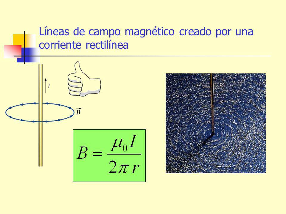Líneas de campo magnético creado por una corriente rectilínea