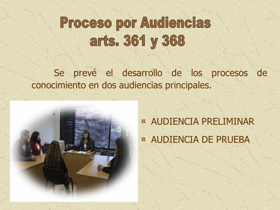 Proceso por Audiencias