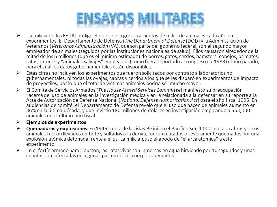 Ensayos militares