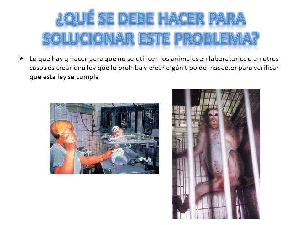 ¿Qué se debe hacer para solucionar este problema