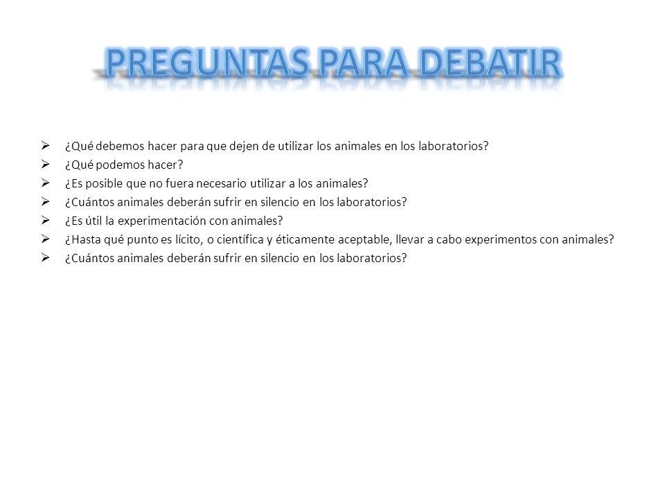 Preguntas para debatir