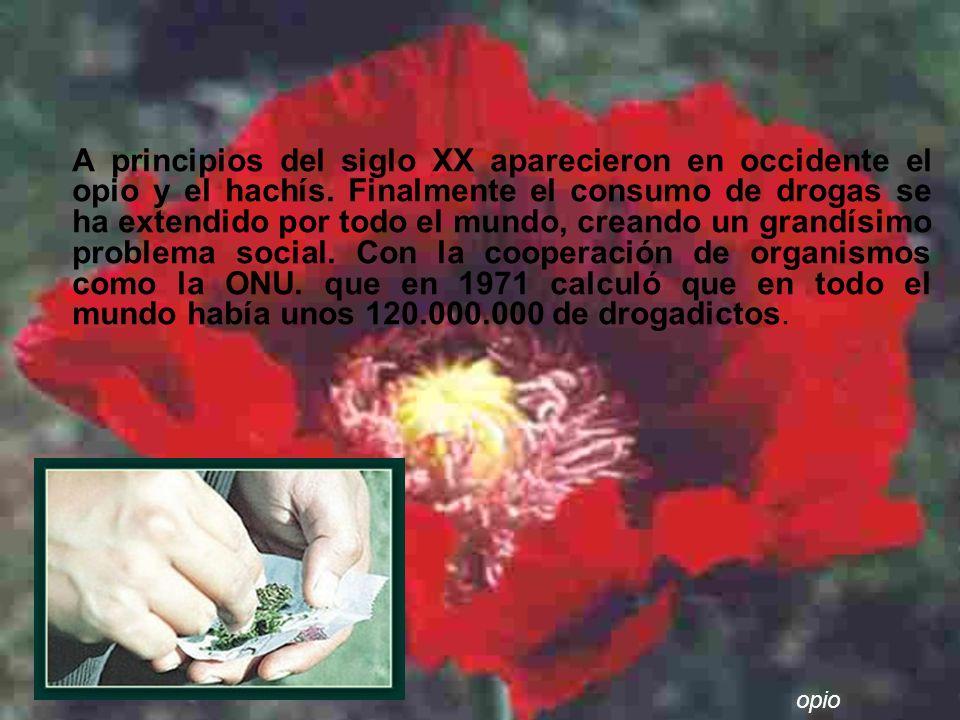 A principios del siglo XX aparecieron en occidente el opio y el hachís