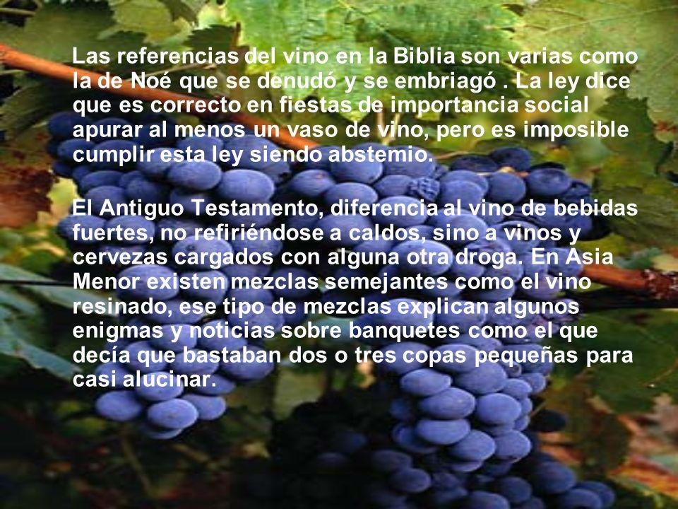 Las referencias del vino en la Biblia son varias como la de Noé que se denudó y se embriagó . La ley dice que es correcto en fiestas de importancia social apurar al menos un vaso de vino, pero es imposible cumplir esta ley siendo abstemio.