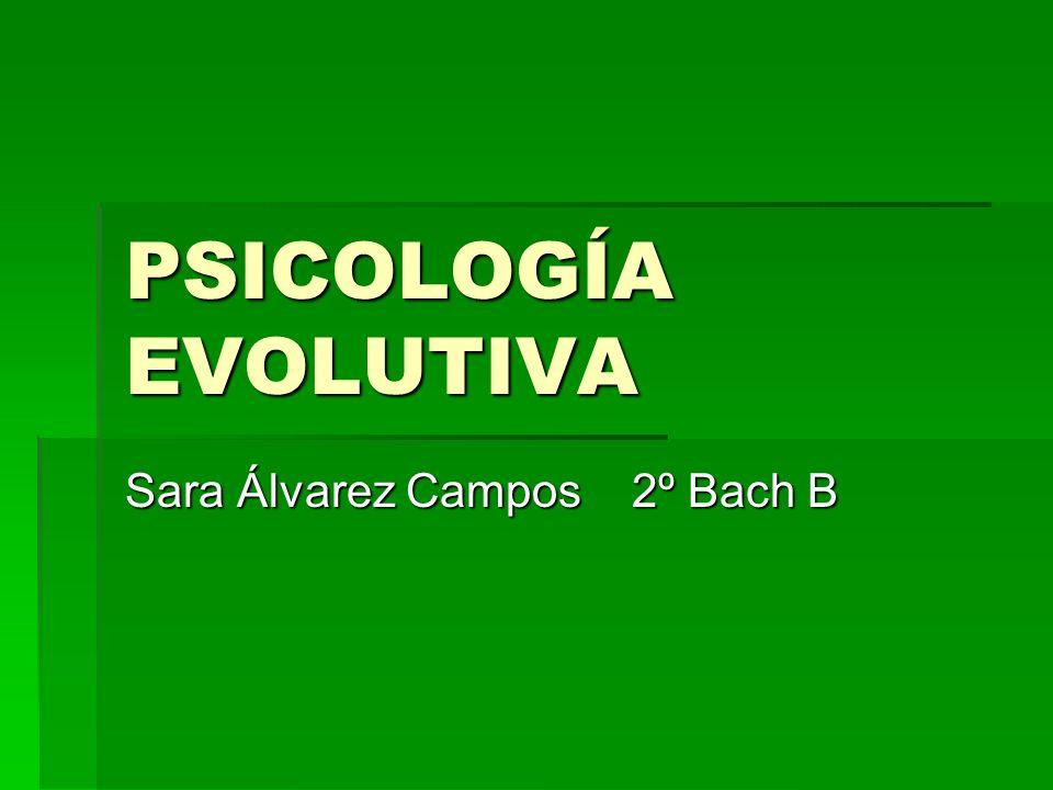 Sara Álvarez Campos 2º Bach B