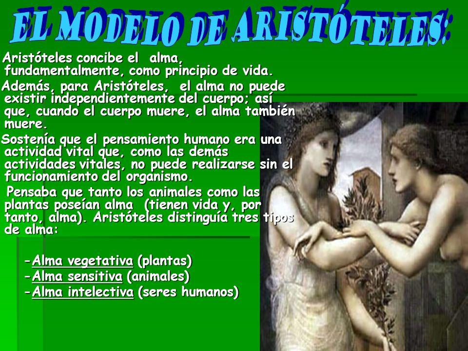 El Modelo de Aristóteles: