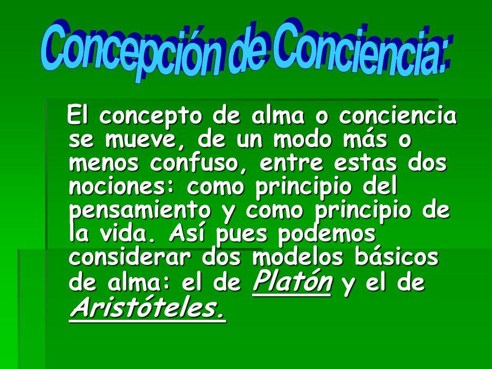 Concepción de Conciencia: