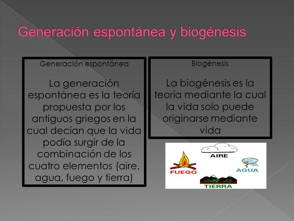 Generación espontánea y biogénesis