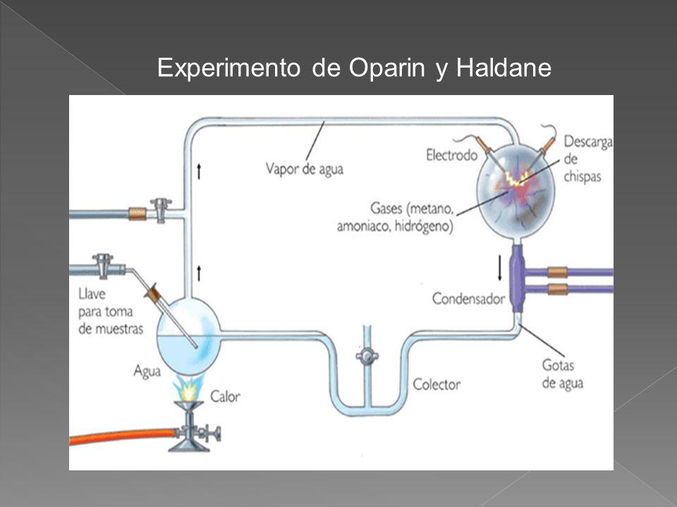Experimento de Oparin y Haldane