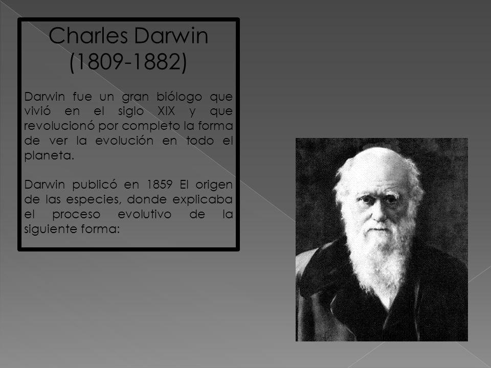 Charles Darwin (1809-1882)