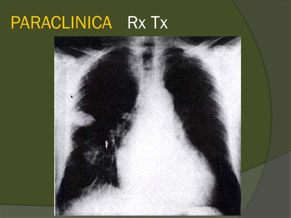 PARACLINICA Rx Tx