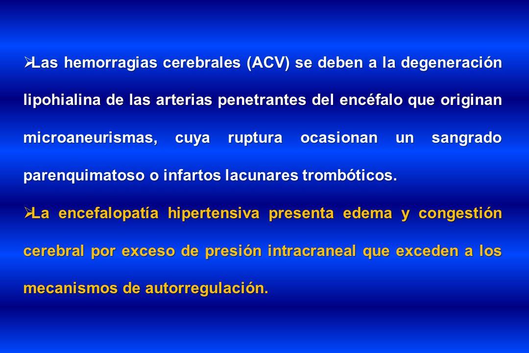 Las hemorragias cerebrales (ACV) se deben a la degeneración lipohialina de las arterias penetrantes del encéfalo que originan microaneurismas, cuya ruptura ocasionan un sangrado parenquimatoso o infartos lacunares trombóticos.